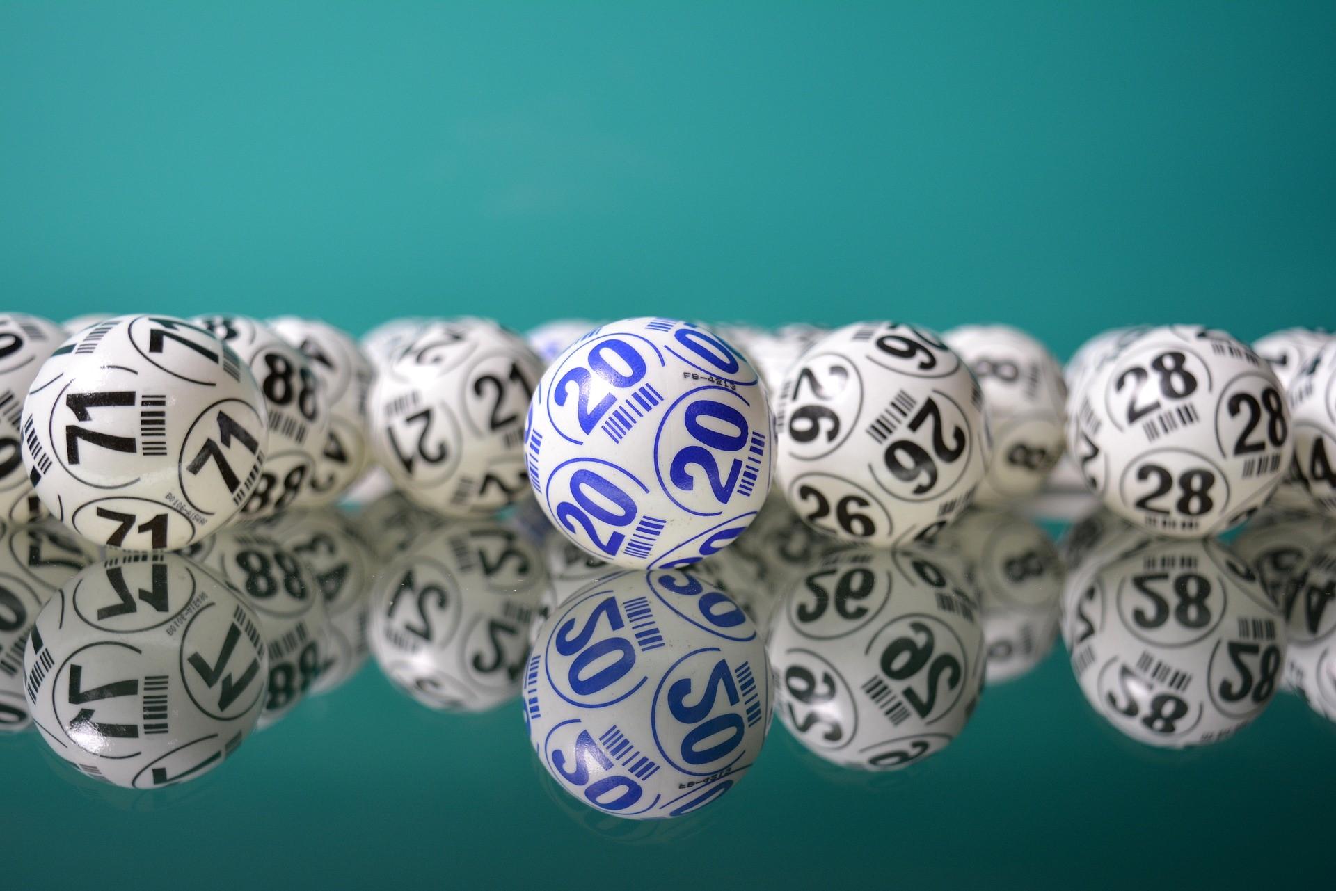 Bingo is the Ultimate